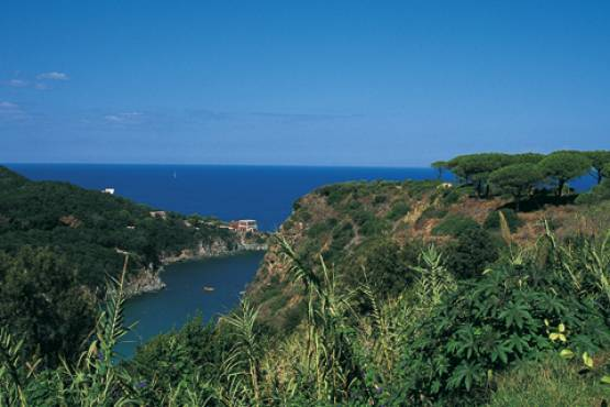 September Special Offer: 7 nights on Ischia