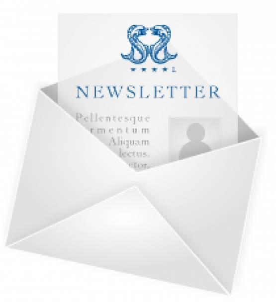 Информационный бюллетень (Newsletter)