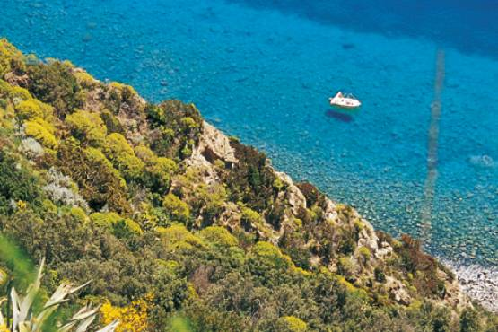 Special Offer: September on Ischia
