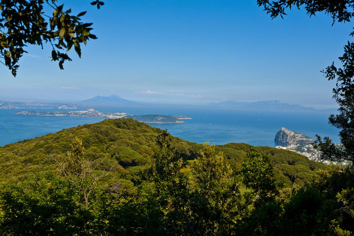 Il Bosco della Maddalena ed il Cretaio